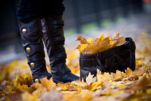 Take the autumn with you by billysphoto