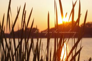 In the remembering. by MariahLynnDesign