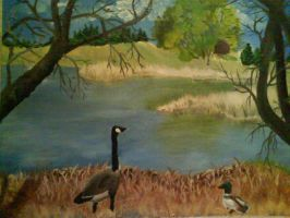 duck pond by KittyNamedAlly