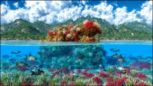 Coral reef madness by dragan45