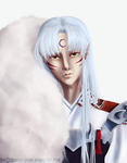 Sesshomaru by crimsonfuture