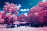 Cotton Candy Land - III by sorny
