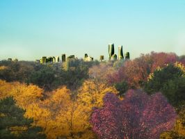 Fall Colours in Mississauga by ronbennett