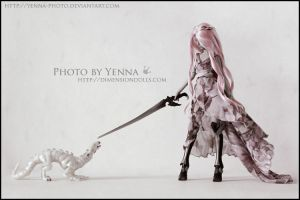 Dragon tamer by yenna-photo