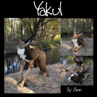 Yakul Costume by Zhon