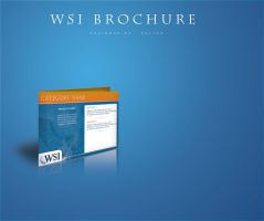 WSI Brochure by RavenGraphics