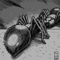 Drew a Spider in the mirror for Video Day143 by LineDetail