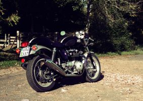 Thruxton in the fall by PerryPride