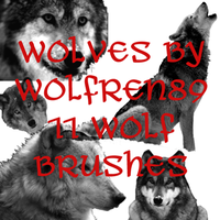 Wolf Brush Set by KitWolfren