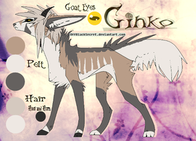 Ginko Reference Sheet by WolfAvenge