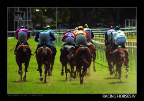 Racing Horses IV by stonemx