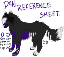 .:Dan Reference Sheet:. by Am3h