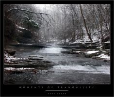 Moments of Tranquility by wulfster