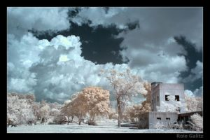 This house by RoieG