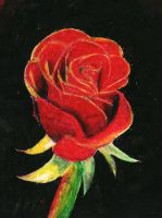 Oil Pastel Rose by skittles52