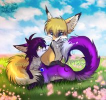 Vulpine love by Shivita