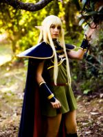 Deedlit from Lodoss War by AnaAesthetic