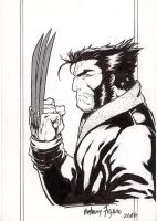 Wolverine n his claws by Kid-Destructo