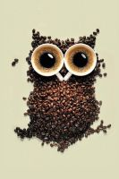 Coffee Owl by zoey5116