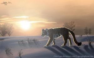 Siberian tiger by ClaireLyxa