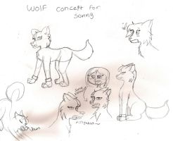 WOLF practice by remnant-imaginations
