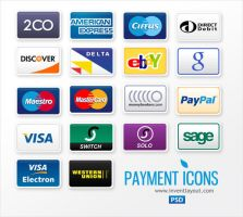 Payment Icons by atifarshad