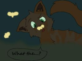 What The....? Bronzey's Confusion! XD by Helsing11