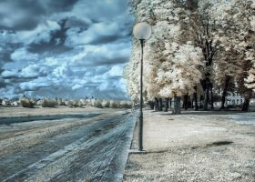IR - Park of my youth by hrcM