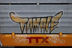 Hot Tamale by worldtravel04