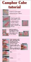 Tutorial for Camphor cube by snowny