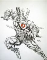 Storm Shadow by Xpendable