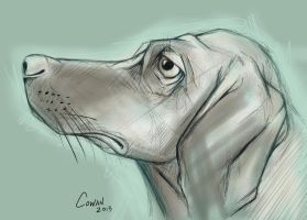 Dog Sketch by Keith0186
