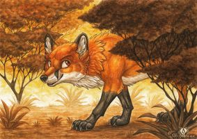 Autumn Fox by DolphyDolphiana