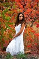 Red Leaves, White Dress by inessentialstuff