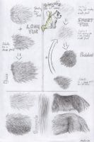 Realistic fur tutorial by Equive
