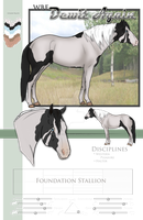 Paint Horse SOLD by Rising-High-Ranch