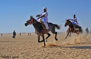 West Aswan Horse racing  02 by Nile-Paparazzi