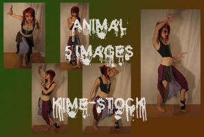 Animal 4 by kime-stock