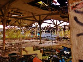 abandoned furniture plants XIV by tussy1483