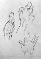 Hand Gestures 5 by reggy66