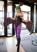 Morrigan - ANEXT 2010 by Interstella5