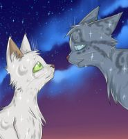 Halfmoon and Jayfeather by Do-omed-Moon