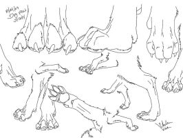 Canine Paw Study by WickerWolfArt