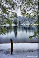 Spring Snow in California by kayaksailor