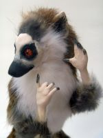 Ringtailed Lemur Room Guardian Face by AnyaBoz