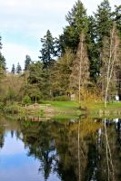 Canby Park by dellamort