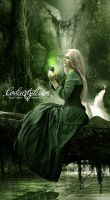 EMERALDA by codeartworks