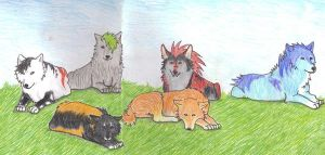 Wolf Pack by LifesATease