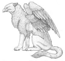 Pencil Gryphon bw by gryphonworks