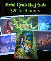 Print Grab Bags - SOLD OUT by Shadow-Wolf